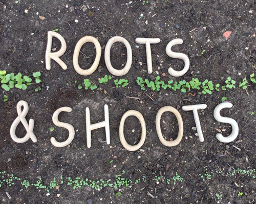 Root and Shoots letters