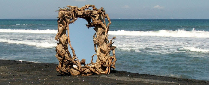 Real Driftwood by Emily Readett-Bayley
