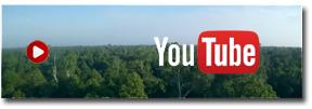 ERB and Katingan on YouTube