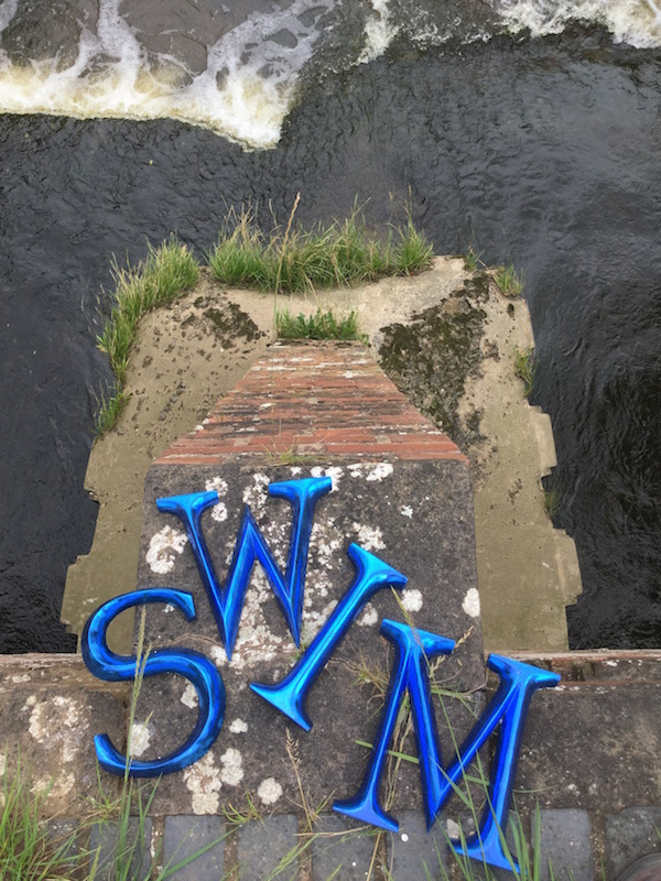 swim letters