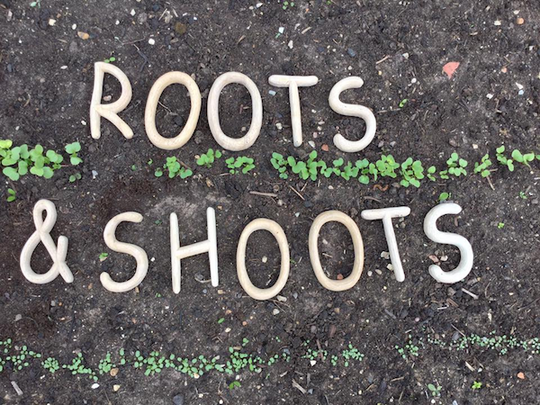 roots and shoots letters