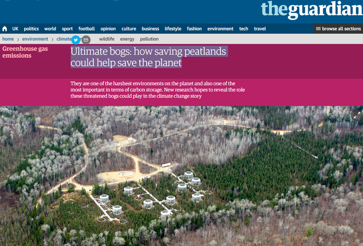 the guardian: Ultimate bogs: how saving peatlands could help save the planet